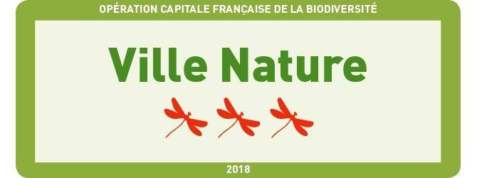 logo 3 libellules