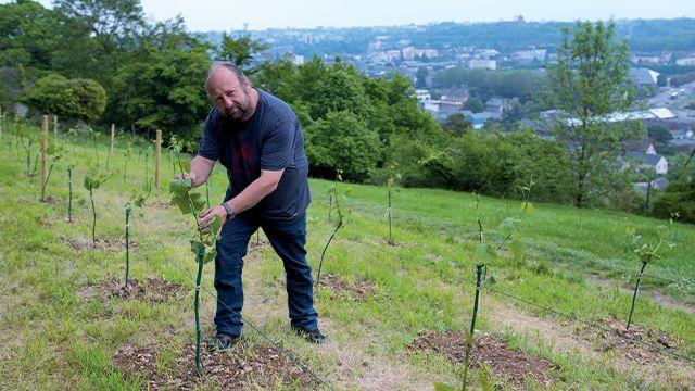 Franck Amisse dans les vignes ode Saint-Michel