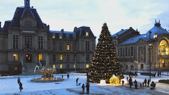 Noël 2019 : Géant et Nature