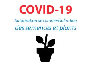 covid19 semences