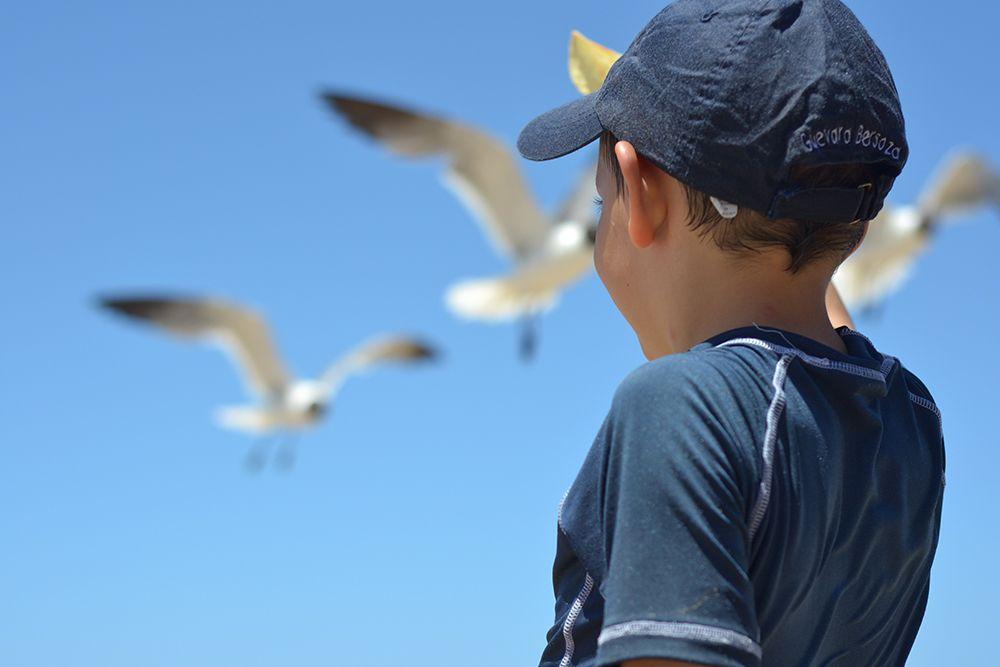 Enfant qui regarde à l'horizon avec des Goélands