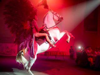 Femme à cheval et costumée avec de grandes plumes