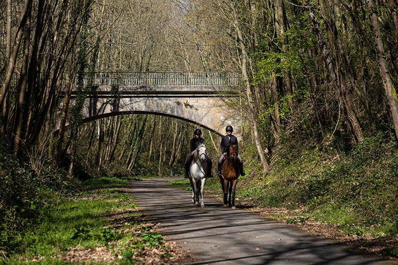 voie verte avec chevaux
