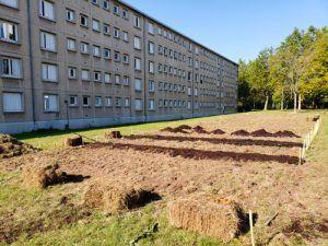 butte de terre prête à accueillir les légumes